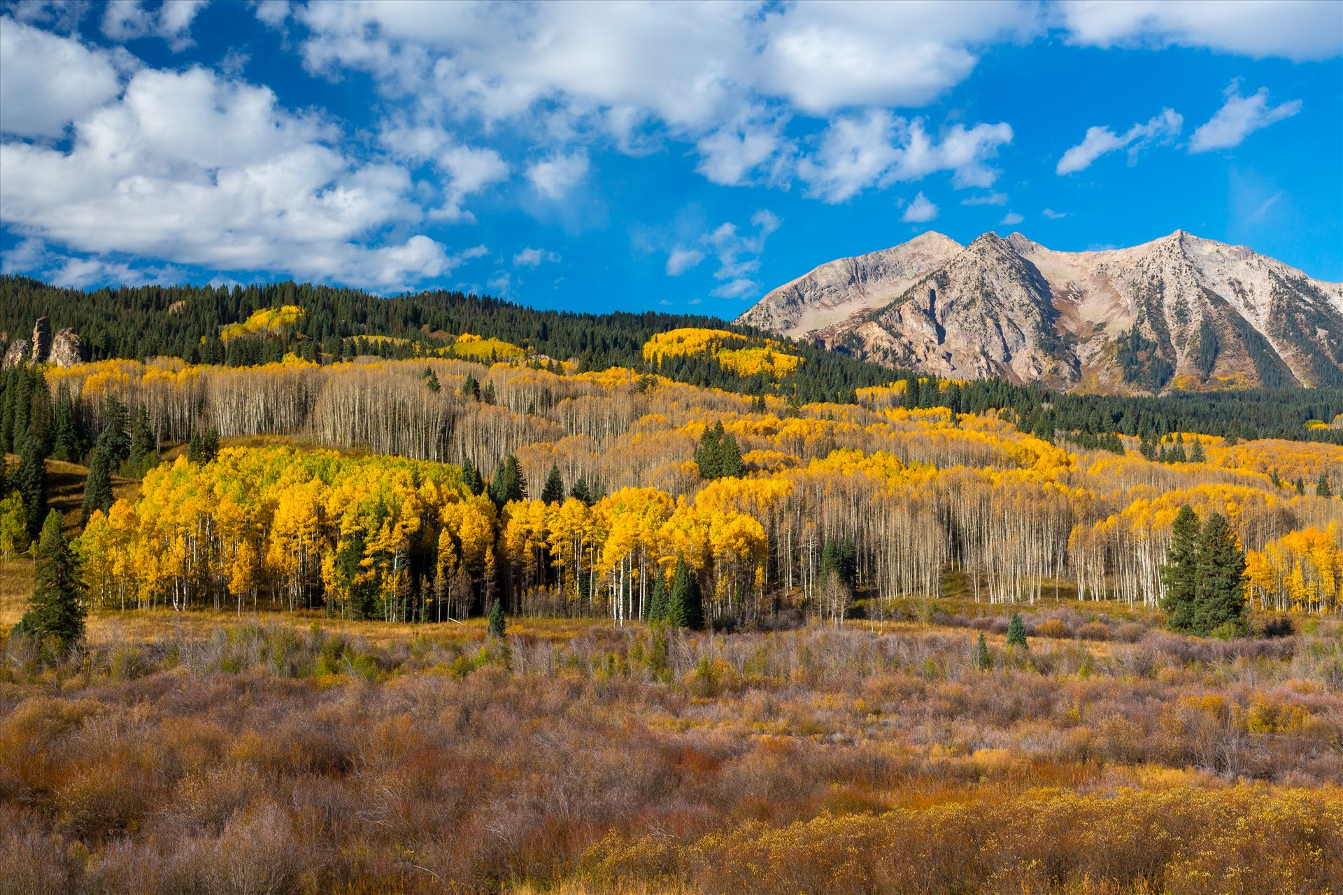 East Beckwith Mountain - East Beckwith mountain surrounded by fall colors. Taken a few steps off Kebler Pass, Crested Butte, Colorado. by Scott Smith Photos