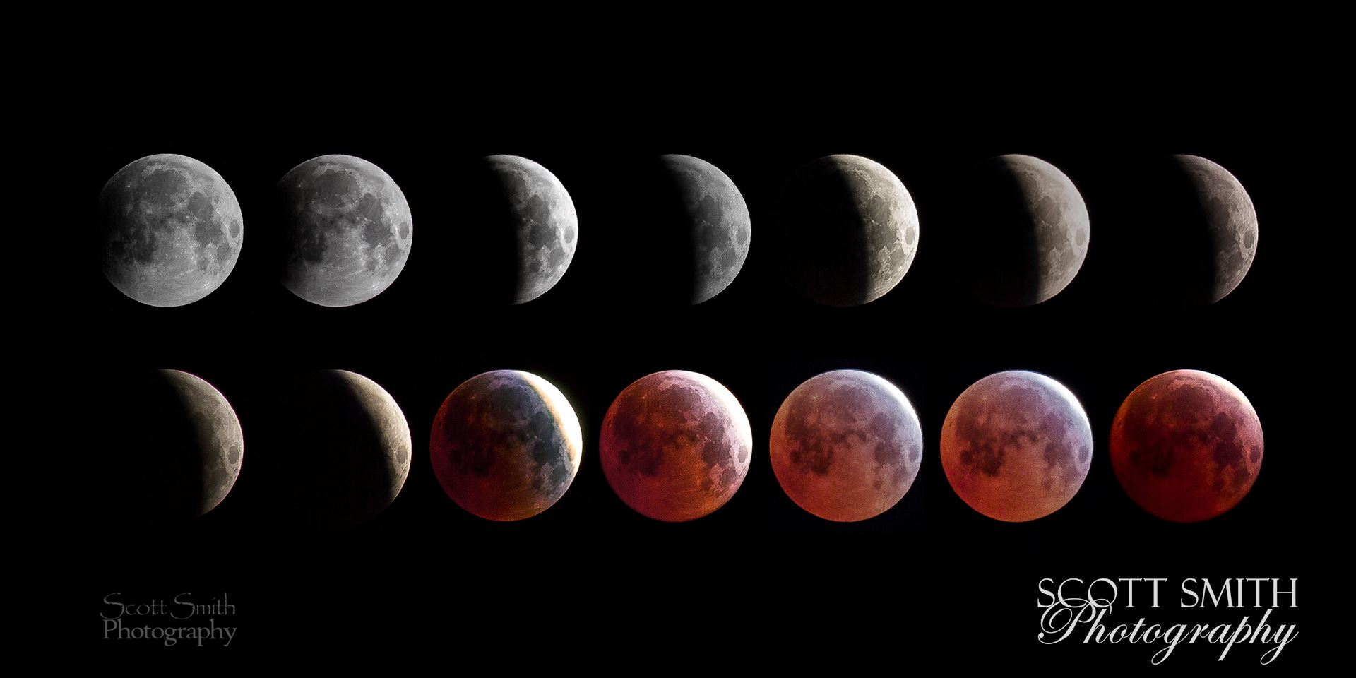 April 4 2015 Eclipse Collage - A collage of 14 images from the spring 2015 lunar eclipse, showing the different phases of the moon. by Scott Smith Photos
