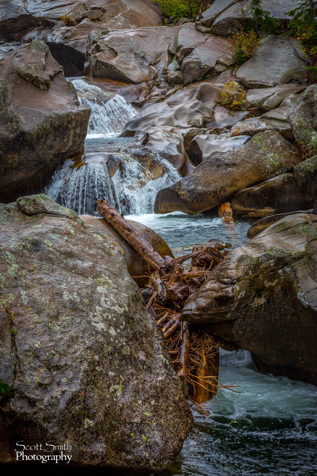 The Grottos - The Grottos outside of Aspen on Independence pass. by Scott Smith Photos