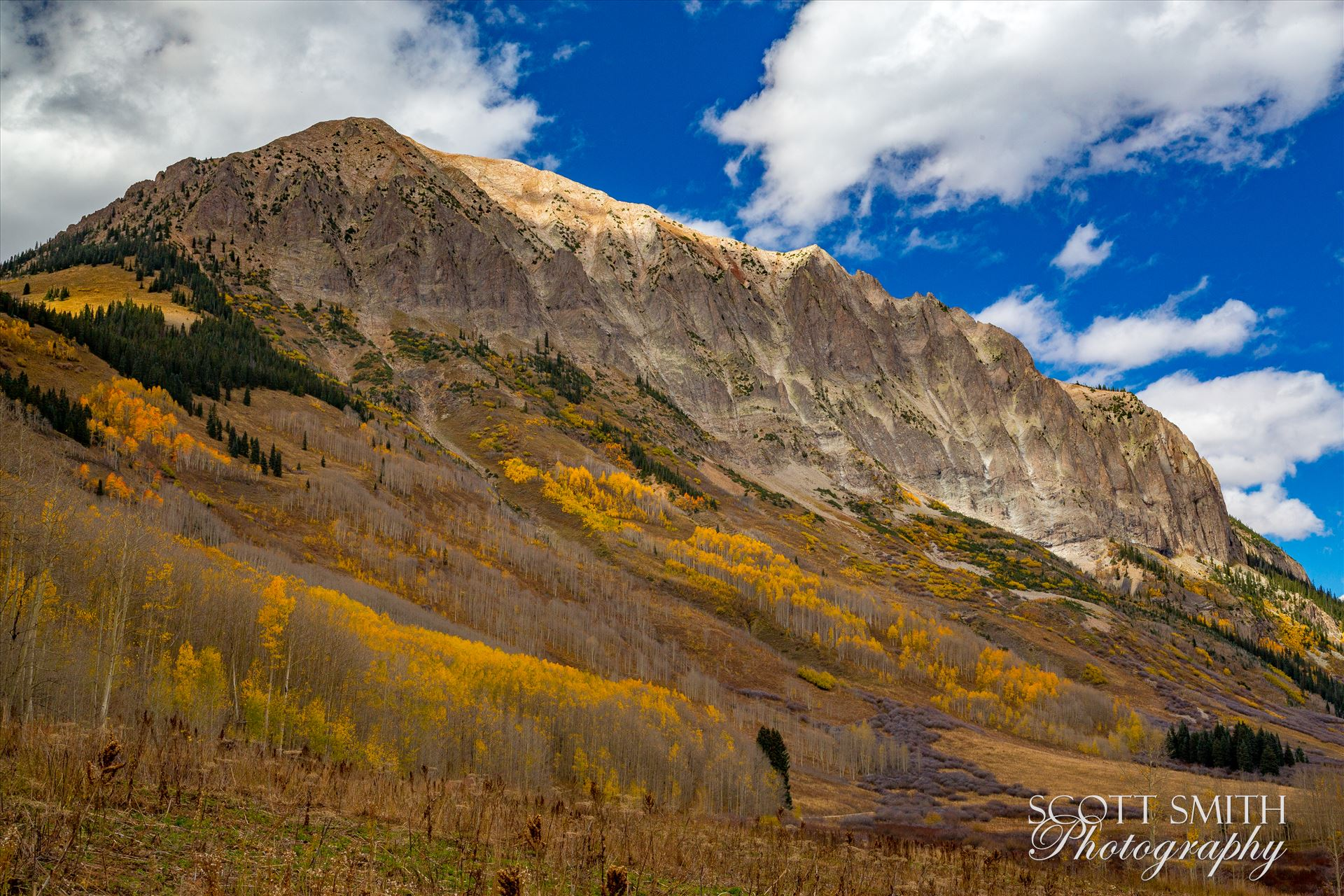 Gothic Mountain - Fall colors on Gothic mountain, near Crested Butte Colorado. by Scott Smith Photos