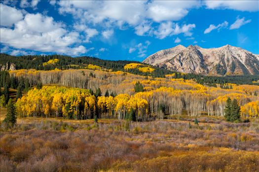 East Beckwith mountain surrounded by fall colors. Taken a few steps off Kebler Pass, Crested Butte, Colorado.