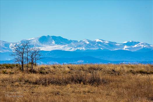 The front range from the Rocky Mountain Arsenal Wildlife Refuge.