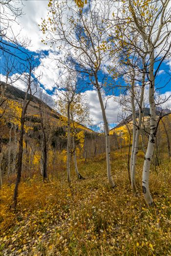 Just off Maroon Creek Drive near Aspen, Colorado