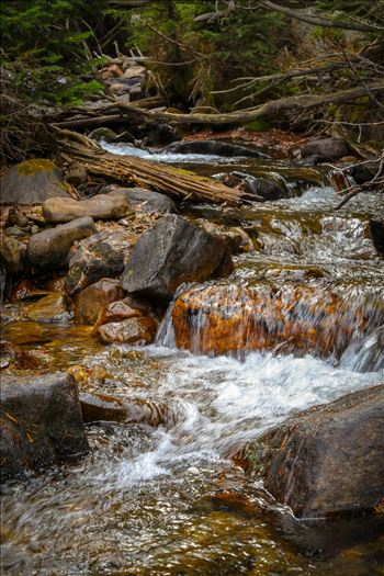 Preview of Near Alberta Falls, Rocky Mountain National Park
