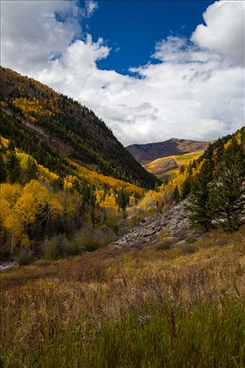 Fall grasses and valley in the Snowmass Wilderness Area.